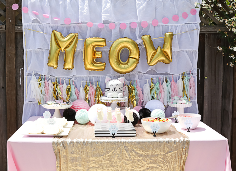 Kitty Cat Birthday Party I